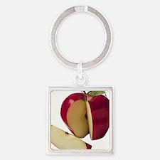 Apple Keychains