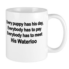 EVERYBODY HAS TO MEET HIS WATERLOO Mugs