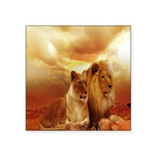 """Africa Lion and Lioness Square Sticker 3"""" x 3"""""""