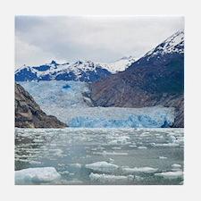 Sawyer Glacier Alaska Tile Coaster