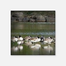"Cute Wild geese Square Sticker 3"" x 3"""