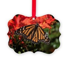 Honeysuckle Monarch Butterfly Bea Ornament