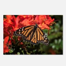 Honeysuckle Monarch Butte Postcards (Package of 8)