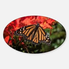 Honeysuckle Monarch Butterfly Beaut Sticker (Oval)