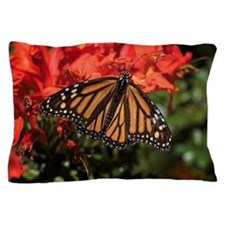 Honeysuckle Monarch Butterfly Beauty Pillow Case