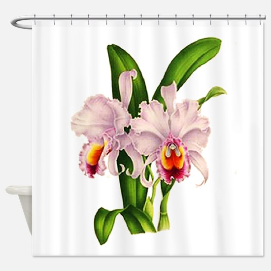 Violet Whisper Cattleyea Orchid Shower Curtain