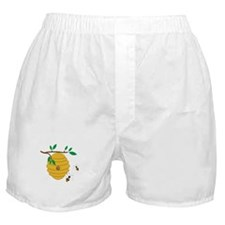 Bee Hive Boxer Shorts