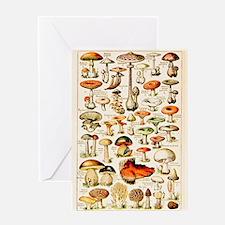 Vintage Mushroom Print Greeting Card