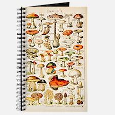 Vintage Mushroom Print Journal