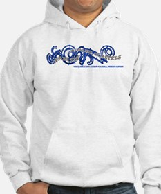 Fan of Roller Coasters Hoodie