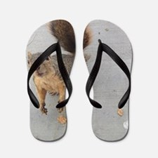 squirrel'n around Flip Flops