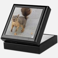 squirrel'n around Keepsake Box