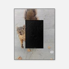 squirrel'n around Picture Frame