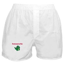 Ryanosaurus Rex Boxer Shorts