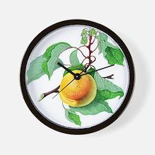 Apricot Wall Clock