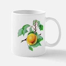 Apricot Mugs