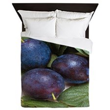 Plums Queen Duvet