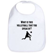 What Is This Volleyball? Bib