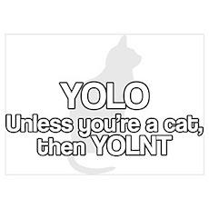 YOLNT Poster