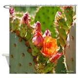 Arizona Shower Curtains