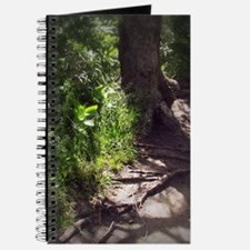 Cute Green lake wisconsin Journal