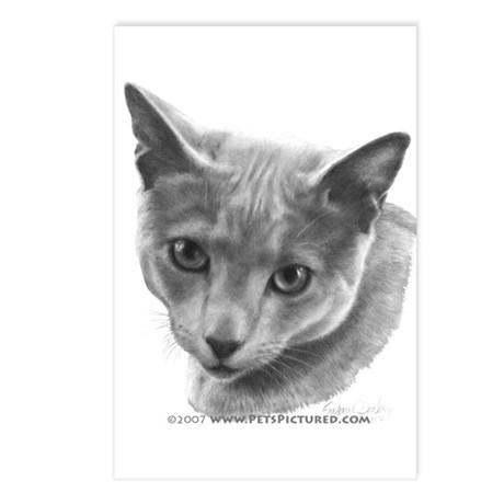 Russian Blue Cat Postcards (Package of 8)