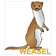 Weasel Canvas Art