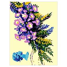 Bermuda Royal Flora Poster