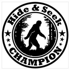 Hide and seek world champion Poster