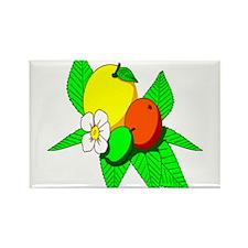 Citrus Magnets