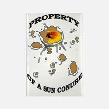 Property of a Sun Conure Rectangle Magnet