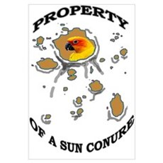 Property of a Sun Conure Poster