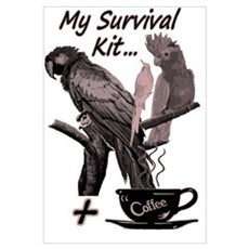 Parrots and Coffee Poster