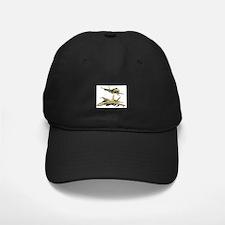 Cool Miscellaneous Baseball Hat