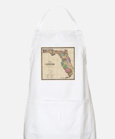 Vintage Map of Florida (1870) Apron