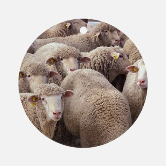 Sheep Herd Ornament (Round)