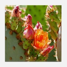 Prickly Pear Blooms Tile Coaster