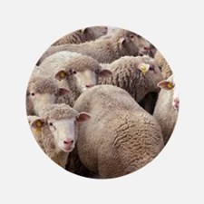 "Sheep Herd 3.5"" Button (100 pack)"