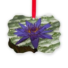 Circle4 Waterlily Picture Ornament