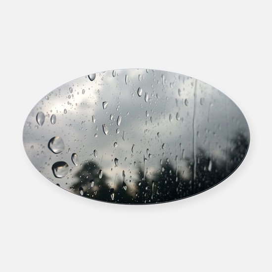 Cool Nature Oval Car Magnet