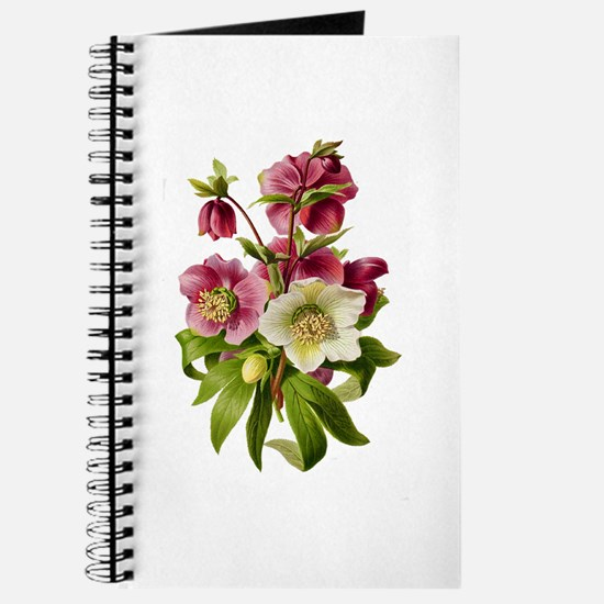 Purple and White Hellebores Journal