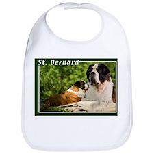 St Bernard-2 Bib