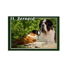 St Bernard-2 Rectangle Magnet (100 pack)