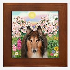 Blossoms - Collie (H) Framed Tile