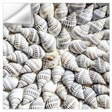 Seashell Pattern Wall Decal