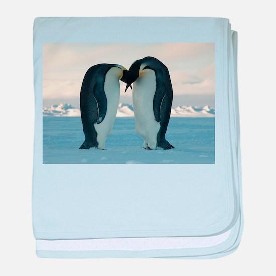Emperor Penguin Courtship baby blanket