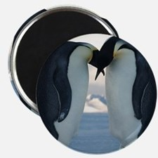 Emperor Penguin Courtship Magnets