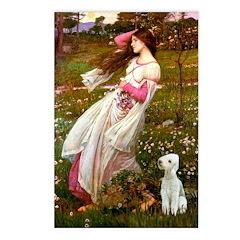 Windflowers/Bedlington T Postcards (Package of 8)