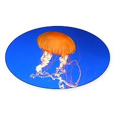 Jellyfish Decal