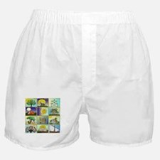 12 Tribes Of Israel Boxer Shorts